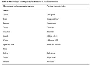 Macroscopic and Organoleptic Features of Diodia sarmentosa