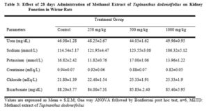 Effect of 28 days Administration of Methanol Extract of Tapinanthus dodoneifolius on Kidney Function in Wistar Rats