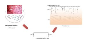 Transdermal drug delivery graphical abstract